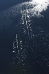 Elevated view of two rowing eights in water - ZEF000453