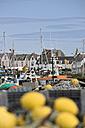France, Brittany, Department Finistere, Le Guilvinec, Harbour - LAF001129