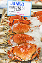 USA, Washington State, Seattle, Pike Place Fish Market, Dungeness crabs at market stand - FO007104