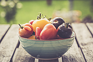 Germany, Different heirloom tomatoes in a bowl - SARF000848