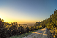 Australia, Queensland, mountain path at sunrise - PUF000094