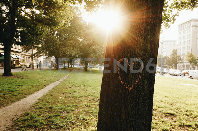 Germany, Berlin, heart painted on tree trunk - ZMF000379 - Michael Zwahlen/Westend61