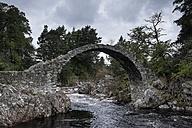 United Kingdom, England, Scotland, Badenoch and Strathspey, Carrbridge, Remains of the old bridge - ELF001366