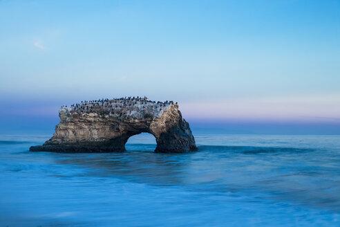 USA, California, Santa Cruz County, Big Sur, Pacific Ocean, Natural Bridges State Beach, Natural Bridge, Blue hour - FOF007252