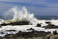 USA, California, Sonoma County, Pacific Coast, Salt Point State Park, Gerstle Cove, Wave, Tafoni, sand stone - FOF007247