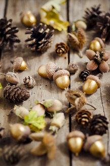 Autumnal decoration on wood - CZF000175