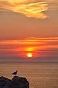 France, Brittany, Pointe de Pen-Hir, Rocky coast in evening light - DSG000251