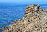 France, Brittany, Cote Sauvage at Qiberon peninsula - DSGF000274