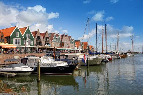 Netherlands, Volendam, Ijsselmeer, harbor - DSGF000776