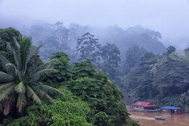 Malaysia, Pahang, Taman Negara National Park, jungle at Sungai Tembeling - DSGF000311