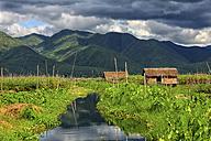 Myanmar, canal at Lake Inle - DSGF000356