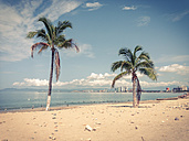 Beach with two palm trees in Puerto Vallarta, Mexico - ABAF001494