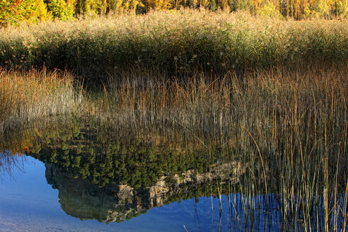Spain, Cuenca, Lagoons of Jucar river near Una village - DSGF000670