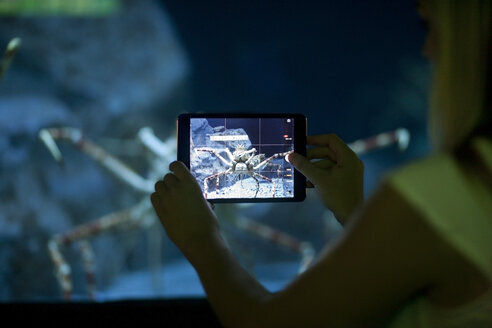 Woman photographing crab with mini tablet in an aquarium - ZEF001259