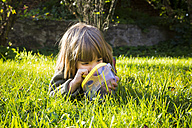 Little girl lying on a meadow with insect can watching fire bugs, Pyrrhocoridae - LVF002008