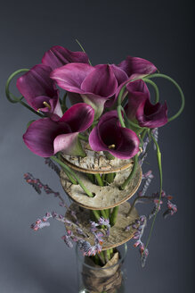Floral arrangement of Betula pendula, Allium sativum, Echeveria, Calla - NN000172