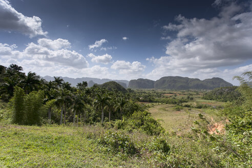 Cuba, Pinar del Rio, view to Vinales Valley with Mogotes in the background - NNF000038