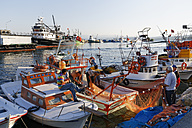 Turkey, Black Sea Region, Sinop Province, Sinop, Fishing harbour - SIEF006087
