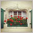 Switzerland, Gruyeres, house with flower box - GWF003223