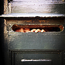 Girl peeking through mailbox slot - LVF002023