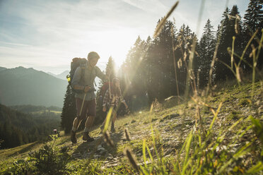 Austria, Tyrol, Tannheimer Tal, young couple hiking in sunlight on alpine meadow - UUF002147