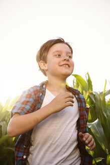 Boy running through maize field at backlight - FKIF000074