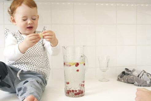 Little girl sitting on kitchen counter tasting lemon slice - FSF000241