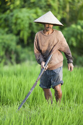 Indonesia, Bali, man working in the field - NNF000055