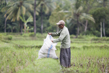 Indonesia, Lombok, man working in field - NNF000062
