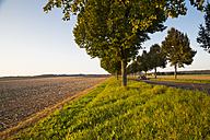 Germany, Baden-Wuerttemberg, Einsiedel, view to harvested field and tree-lined road with convertible at autumn - LVF002063