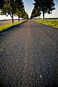 Germany, Baden-Wuerttemberg, Einsiedel, empty tree-lined road at sunlight - LVF002061