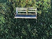 Old bench in gras, near Kempten, Germany - FLF000548