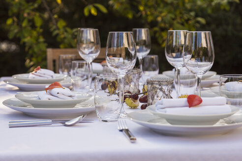Autumnal laid table in garden - WDF002725