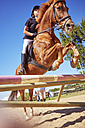 Girl on horse crossing obstacle on course - ZEF001739