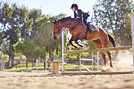 Young woman on horse crossing obstacle on course - ZEF001756