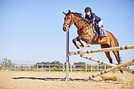 Young woman on horse crossing obstacle on course - ZEF001758