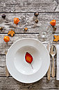 Soup dish on autumnal laid table - LVF002090