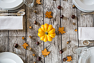 Autumnal laid table with yellow pumpkin - LVF002091