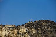 Portugal, Algarve, Lagos, Cliff - KBF000222