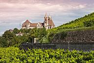 Germany, Baden-Wuerttemberg, Breisach, Eckartsberg vineyard and Breisach Minster in the background - WIF001137