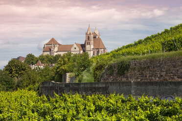 Germany, Baden-Wuerttemberg, Breisach, Eckartsberg vineyard and Breisach Minster in the background - WIF001137