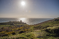 United Kingdom, England, Cornwall, Land's End, Coast at sunset - FRF000062
