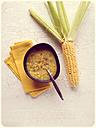 Corn Chowder - EVGF000978