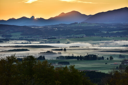 Germany, Bavaria, Allgaeu, landscape in morning fog at Auerberg - FDF000078