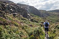 United Kingdom, England, Cornwall, Boscastle, Hiker at High Cliff - FRF000081