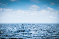 Mexico, person kayaking on the Pacific Ocean - ABAF001564