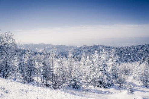 Germany, Baden-Wuerttemberg, Black Forest, snow-covered landscape - PUF000182