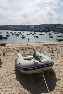 UK, England, Cornwall, St Ives, boat on beach - PAF001056