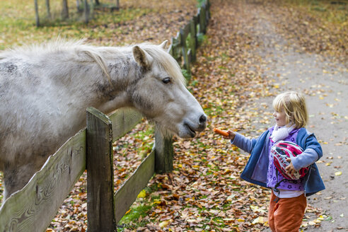 Little girl feeding horse - JFEF000523