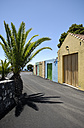 Spain, Canary Islands, La Palma, palm tree and colorful garage doors - GUFF000023